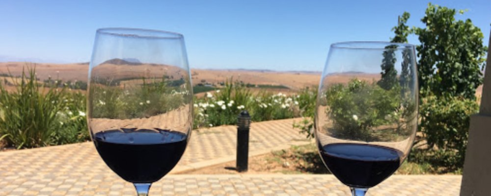 Two glasses of wine in an outdoor setting - perfect for a vegan holiday in the Western Cape