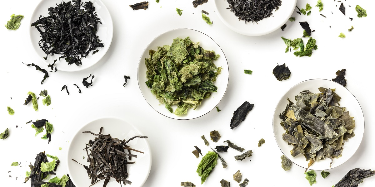 A panoramic overhead shot of a variety of dry seaweed, sea vegetables, on a white background
